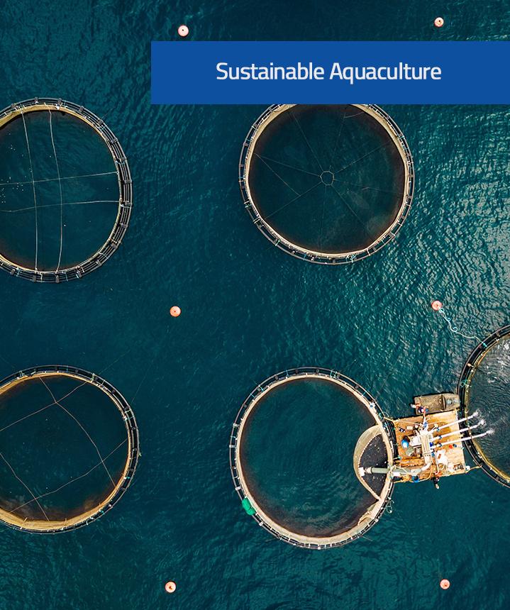 Aquaculture hero image