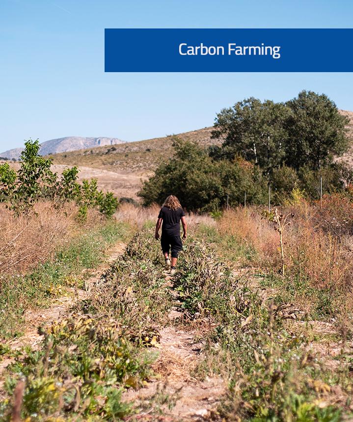 Carbon Farming image (1)